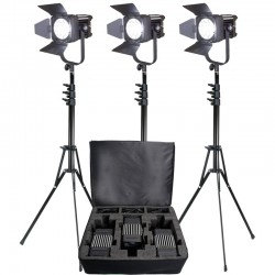 Ledgo LG-D600LK3 Fresnel 3 LED light KIT