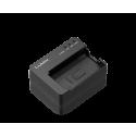 Panasonic DMW-BTC14E polnilnik