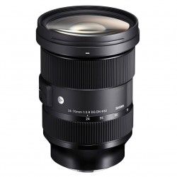 Sigma 24-70mm f/2.8 DG DN Art Sony E