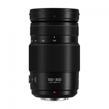 Panasonic G VARIO 100-300 F4.0-5.6 II POWER O.I.S.